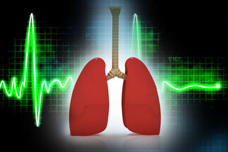 respiration: Human lungs in abreact  background