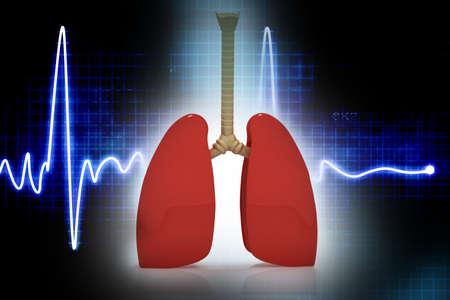 aparato respiratorio: Los pulmones humanos en el fondo abreaccionar Foto de archivo