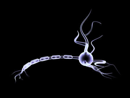 3D neuron cell Stock Photo - 15097482