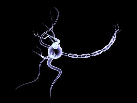 neurone: 3D neuron cell  Stock Photo
