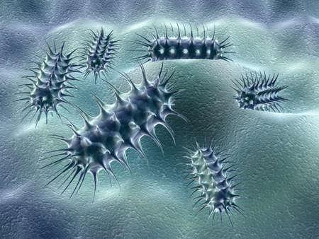 bacterie: groep van bacteriën