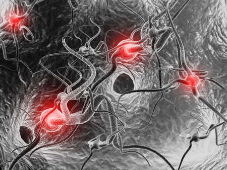 synapse: Neuron  Active nerve cell in human neural system Stock Photo