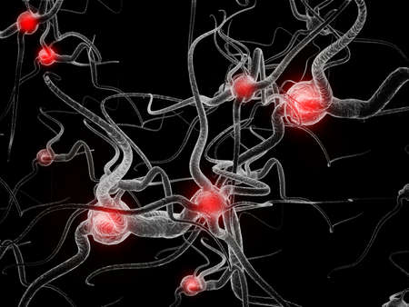 Neuron  Active nerve cell in human neural system photo