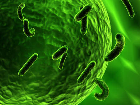 germs: bacteria attacking cell