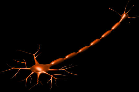 neuron cell in black background Stock Photo - 15712008