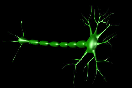 neuron cell in black background  photo