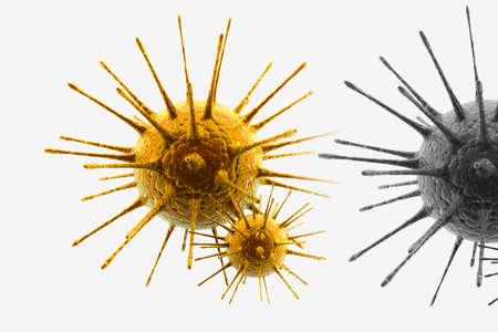 h1n1 virus   photo