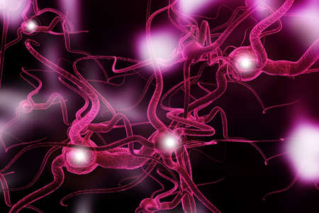 nerve cell: Neuron  Active nerve cell in human neural system Stock Photo