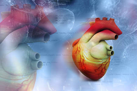Digital illustration of Human heart in abstract medical background Stock Illustration - 17048627