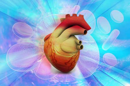 globulo rojo: Ilustración digital de corazón humano en fondo médico abstracto Foto de archivo