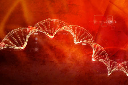 Digital illustration of  DNA  illustration