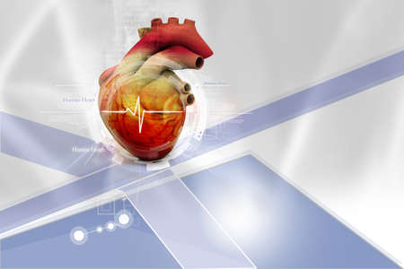 Human heart in abstract design photo