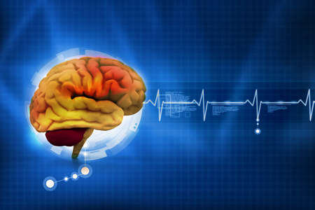 Human brain in abstract medical background Stock Photo