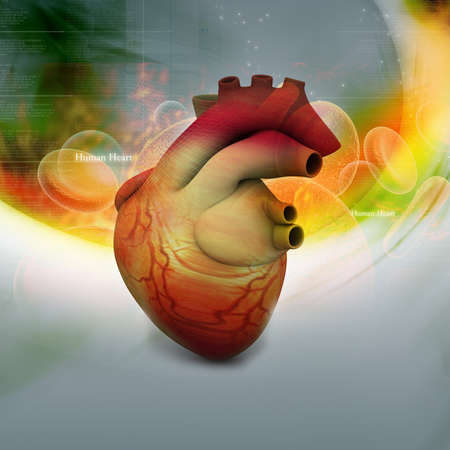 Digital illustration of Human heart in abstract background illustration