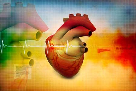 aorta: Digital illustration of Human heart  Stock Photo
