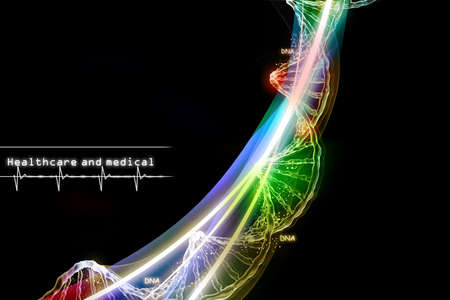 dna strand: Digital illustration of  DNA