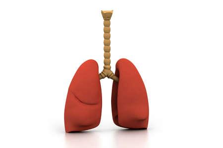 inhale: Human lungs