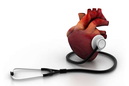 physical exam: Human heart and stethoscope  Stock Photo