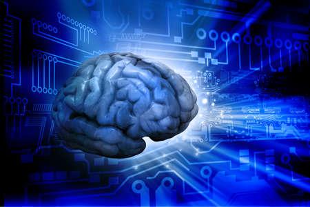 intelligent: Artificial intelligence  digital brain   Digital illustration
