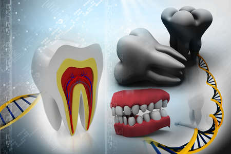 dental pulp: cross section of teeth, toot and DNA  on abstract background