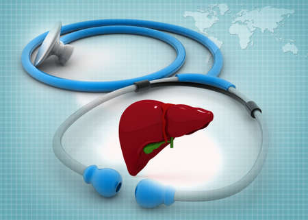 liver organ: Stethoscope with human liver