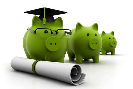 role  model: Posgrado Piggy Banks