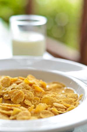 Cereals with milk photo