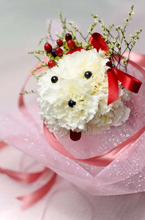 White Carnation Arranged as a Poodle photo