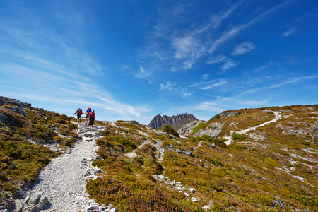 Hikers reaching the summit of a ridge with Cradle Mountain in  Tasmania