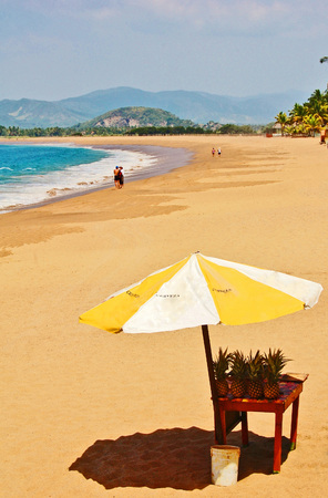 lone large umbrella shading pineapples on golden sandy tropical beach