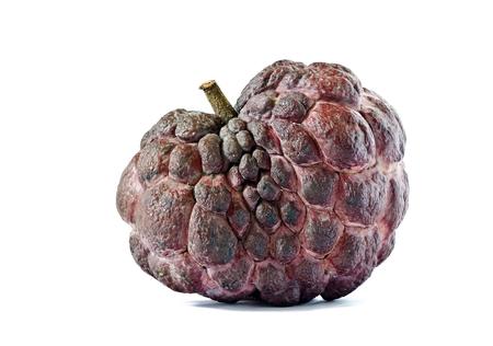 Custard apple,asian famous Noni fruit isolated on white background photo