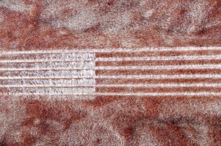 guitar case: La impronta de cuerda de guitarra en el terciopelo, en el interior de la caja de la guitarra.