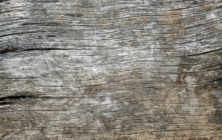 duckboards: Old wooden texture in close up view. Stock Photo