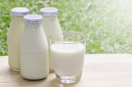 glass of milk: Fresh milk on wooden table in morning light and nature background Stock Photo
