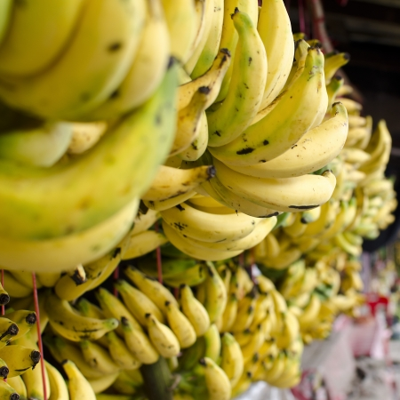 A photo of bananas in square frame