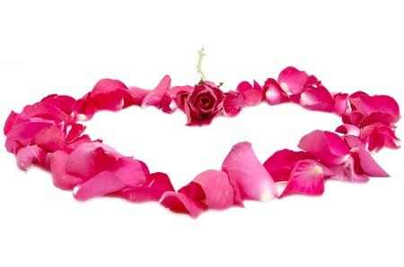 rose in center of petal heart