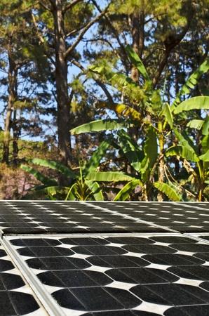 Solar panel at Doi Pui mountain, chiang mai ,thailand photo