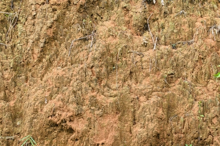 Texture of surface wall of soil