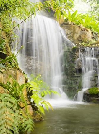 Garden waterfalls Фото со стока