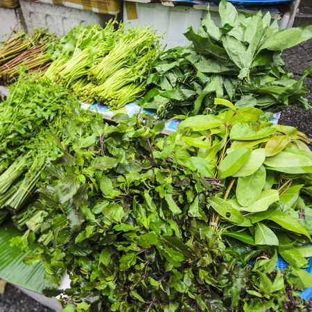 vegetable in thailand market photo