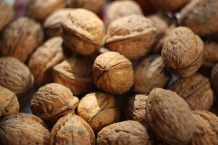 walnut in a nutshell texture