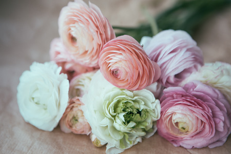 ranunculus: ranunculus bouquet on craft paper wrapping