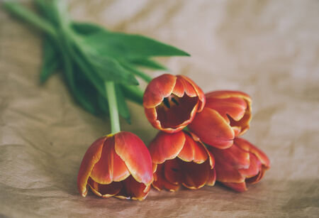 craft paper: tulip bouquet on craft paper wrapping Stock Photo