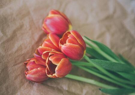 craft paper: tulip bouquet on craft paper