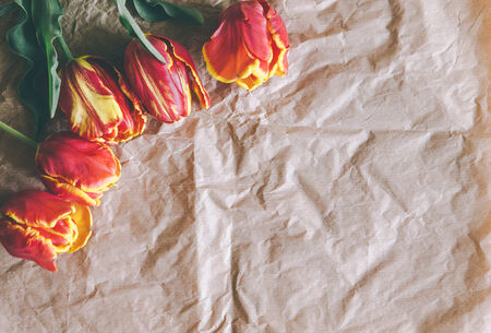 craft paper: tulip bouquet on craft paper wrapping with freespace for text