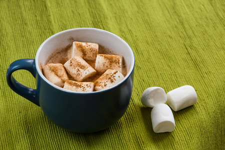 marshmellow: cup of cocoa with marshmellow and cinnamon