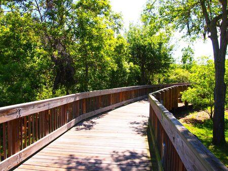 Nature Boardwalk Through Lush Botanical Gardens In Largo, Florida ...