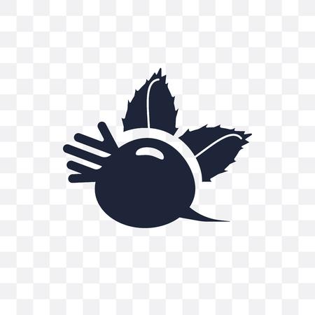 Beetroot transparent icon. Beetroot symbol design from Fruit and vegetables collection. Simple element vector illustration on transparent background. Illusztráció