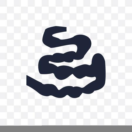 Small Intestine transparent icon. Small Intestine symbol design from Human Body Parts collection.
