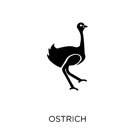 Ostrich icon. Ostrich symbol design from Animals collection. Simple element vector illustration on white background.
